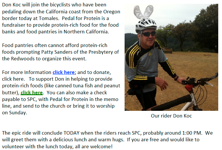Don Koc Pedal for Protein SPINN